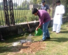 EWC holds tree plantation drive