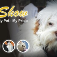 Pet Show 2013: Registration open